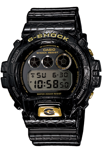 CASIO G-SHOCK DW-6900CR-1E